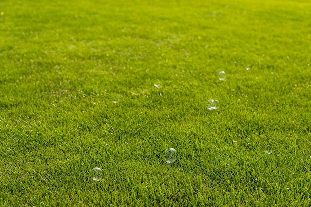 Zeepbellen in de natuur