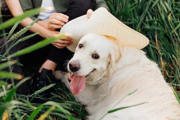 Zeer gelukkige grote witte hond met witte hoed, opgemaakt door zijn baasjes tijdens wandeling. liefde en tederheid. mooie momenten van het leven. jeugd en schoonheid. rust en zorgeloosheid. wandelen in de natuur. levensstijl.