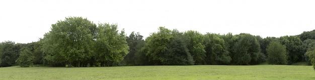 Zeer hoge definitie treeline geïsoleerd op een witte achtergrond