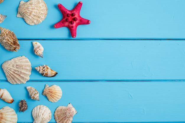 Zeeschelp op houten textuur als achtergrond