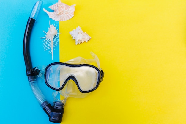 Zeeschelpen en masker voor duiken