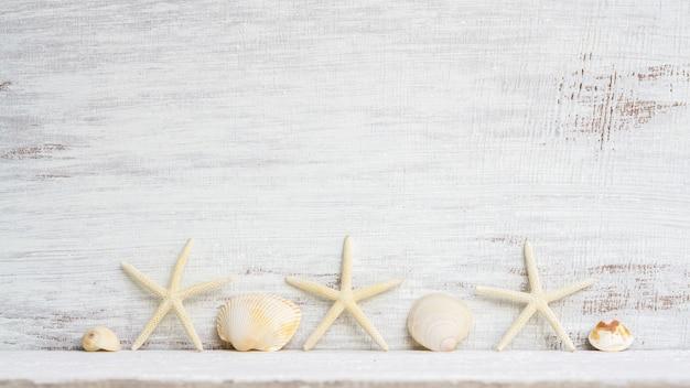 Zeeschelpen en zeester op witte houten achtergrond.
