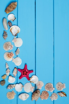 Zeeschelpen op blauwe houten achtergrond. kopieer ruimte, bovenaanzicht.