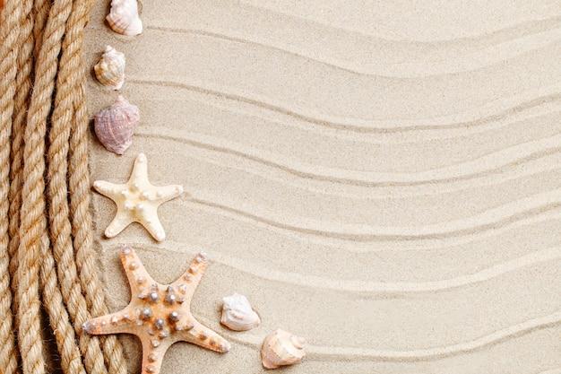 Zeester en palmbladeren die op het overzeese zand liggen