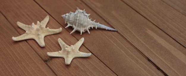 Zeester en zeeschelpen. maritieme zeevaartdecoratie over bruine houten achtergrond
