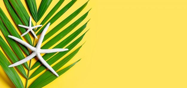 Zeester op tropische palmbladeren op gele achtergrond. geniet van het concept van de zomervakantie. kopieer ruimte