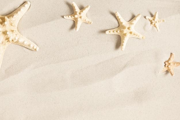 Zeester op zeezand concept van strandvakantie plat leggen