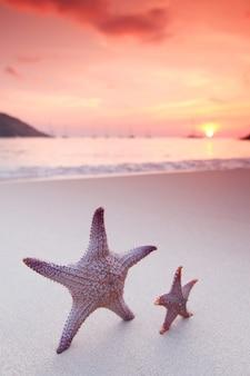 Zeesterren op het strand en de prachtige zonsondergang boven de zee