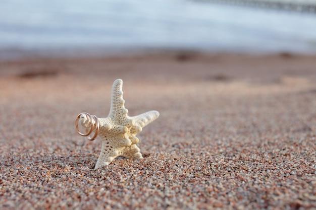 Zeesterren op het zand op het strand aan zee