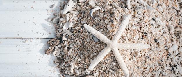 Zeesterren, rif en zeeschelp op wit hout, zomer achtergrond