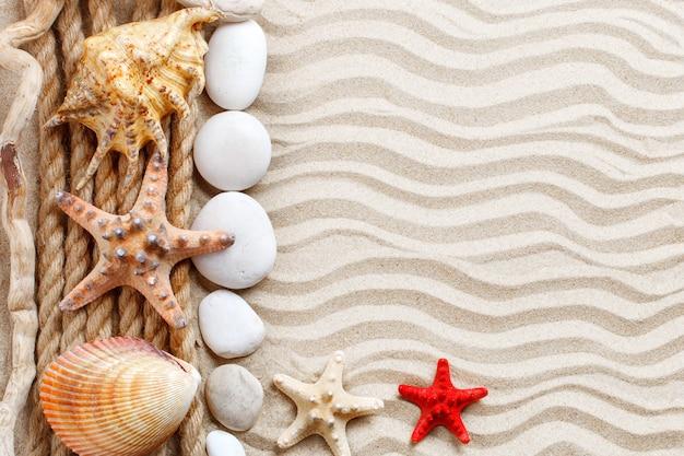 Zeesterren, schelpen, zeestenen en palmbladeren liggend op het zeezand