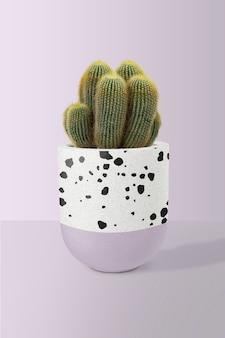 Zeezandcactusmodel in een pot