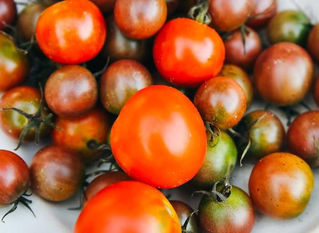 Zelfgekweekte tomaten op de plaat. ecologisch vriendelijke groenten uit eigen tuin.