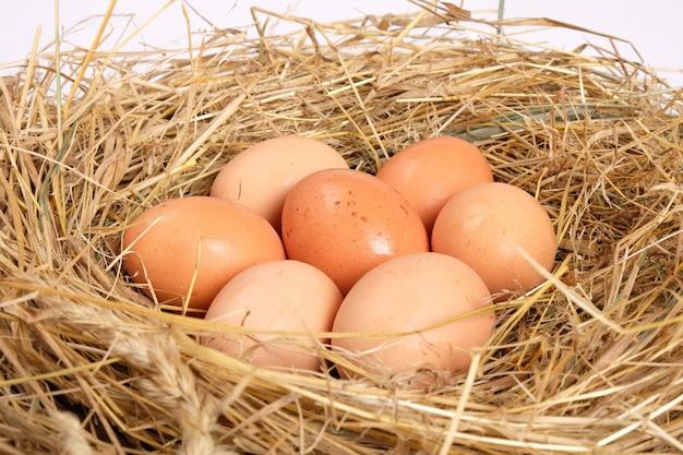 Zelfgemaakt, kippeneieren in het hooi, landbouw. biologisch gezond voedsel, nest met bruine eieren.