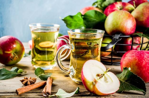 Zelfgemaakte appelcider met kaneel en anijs kruiden, met verse appels