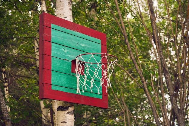 Zelfgemaakte basketbalmand op berk in de natuur.