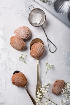 Zelfgemaakte chocoladekoekjes madeleine
