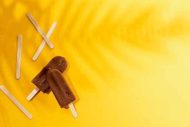 Zelfgemaakte ijslolly chocolade-ijs en schaduw van bladeren