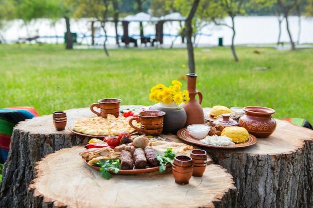 Zelfgemaakte roemeense gerechten met gegrilde vlees polenta en groenten schotel op camping