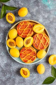 Zelfgemaakte rustieke mini abrikozentaart of taarten met verse abrikozenvruchten.