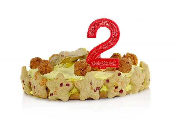 Zelfgemaakte verjaardagstaart van kip voor hond met een kaars nummer twee. geïsoleerd.