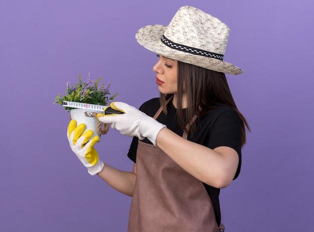 Zelfverzekerde mooie blanke vrouwelijke tuinman met tuinhoed en handschoenen die bloemen in bloempot meten met meetlint geïsoleerd op paarse muur met kopieerruimte