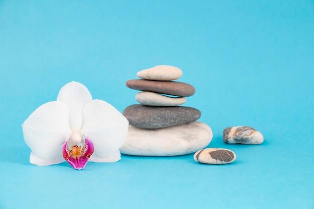 Zen balanceert kiezelstenen met orchideeën. concept van spa en gezondheidszorg, rust en stilte. op een blauwe muur.