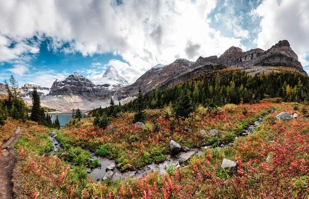 Zet assiniboine met rotsachtige berg in de herfstbos bij provinciaal park op