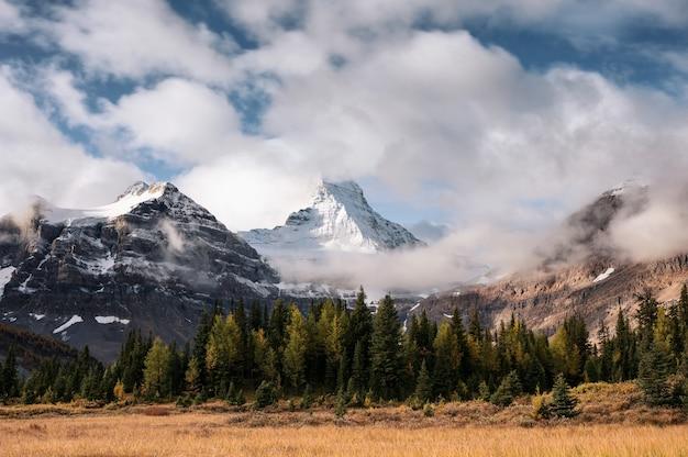 Zet assiniboine op met wolk die door in de herfstbos stroomt op provinciaal park in bc, canada. lange blootstelling