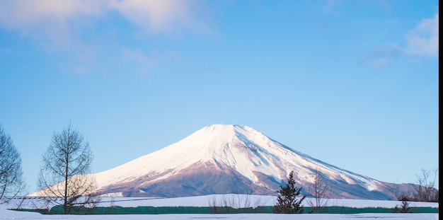 Zet fuji, fujiyama op de hoogste mooie sneeuw kon voor japan mooi landschaps hoogste punt