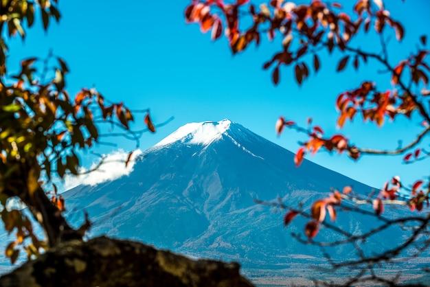 Zet fuji-mening van rode pagode op