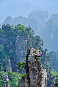 Zhangjiajie-bergen, china