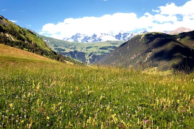 Zicht op de savooise alpen-europa in de zomer