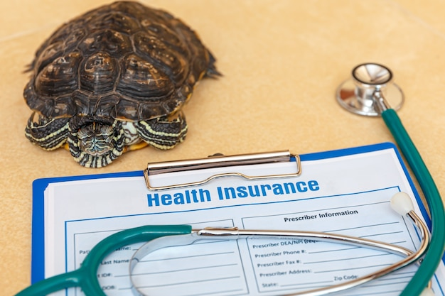 Ziektekostenverzekering met verzekeringsclaimformulier stethoscoop en redeared turtle