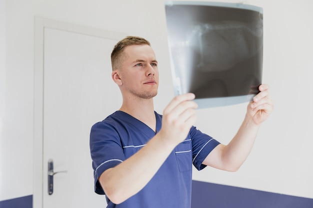Zijaanzicht arts die de radiografie van het dier bekijkt