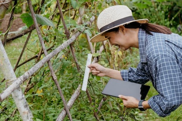 Zijaanzicht aziatische vrouw die verschillende planten met een tablet bestudeert