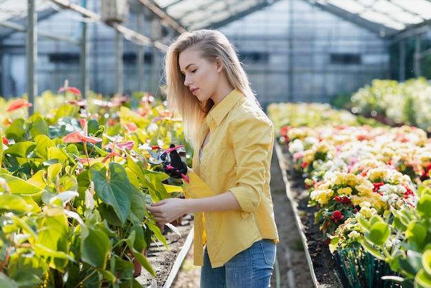 Zijaanzicht jonge vrouwelijke zorgt voor bloemen