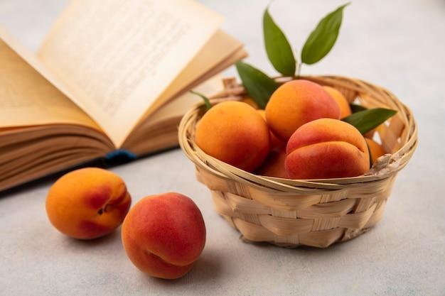 Zijaanzicht van abrikozen in mand en open boek op witte achtergrond