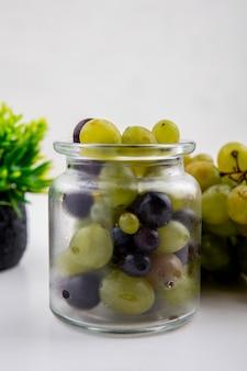 Zijaanzicht van druivenbessen in pot met druivenmost en plant op witte achtergrond