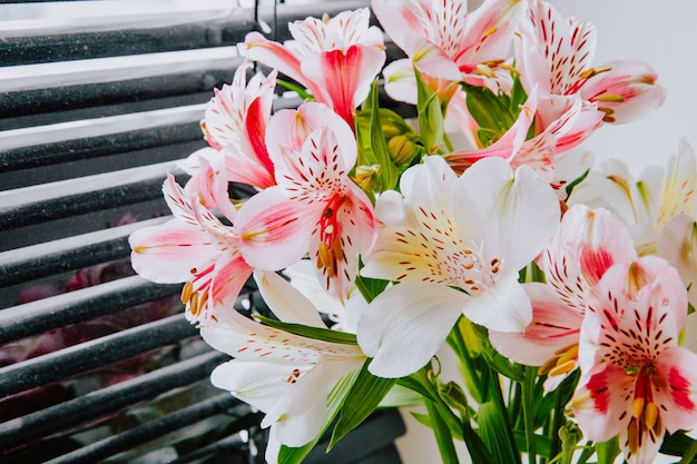 Zijaanzicht van een boeket van roze en witte bloemen van kleurenalstroemeria dichtbij vensterzonneblinden