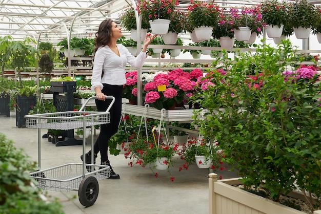 Zijaanzicht van een prachtige jonge brunette vrouw die met een karretje staat en potbloemen kiest om te kopen. concept van grote selectie van mooie bloemen voor een geschenk.