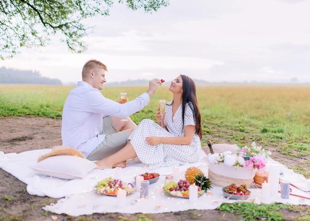 Zijaanzicht van jonge kerel voedt aardbeien mooie brunette op een picknick in het veld