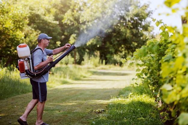 Zijaanzicht van kaukasische volwassen boer in werkkleding, hoed en met moderne pesticide spray machine op rug spuiten insecten in de wijngaard.
