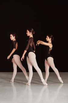 Zijaanzicht van professionele balletdansers in maillots die samen dansen