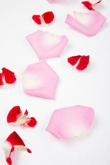 Zijaanzicht van roze bloembloemblaadjes die op witte achtergrond worden verspreid