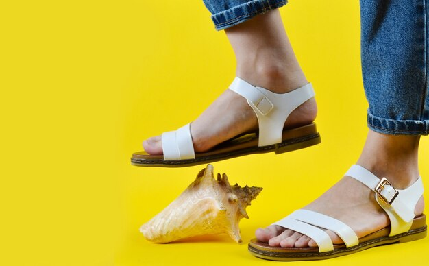 Zijaanzicht van sandalen die op shell stappen