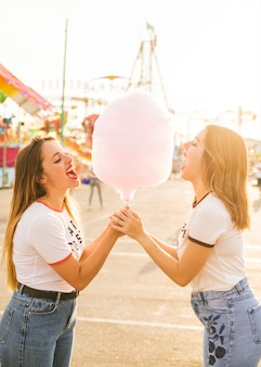 Zijaanzicht van twee vrouwelijke vrienden die roze suikergoedzijde eten