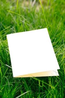 Zijaanzicht van witte kartonnen lege ansichtkaart mock-up van gazon groen gras in park op zonnige zomerdag.