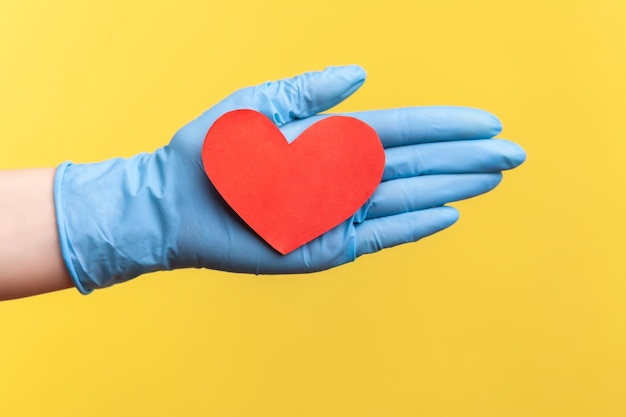 Zijaanzichtclose-up van menselijke hand in blauwe chirurgische handschoenen die kleine rode hartvorm in hand houden.