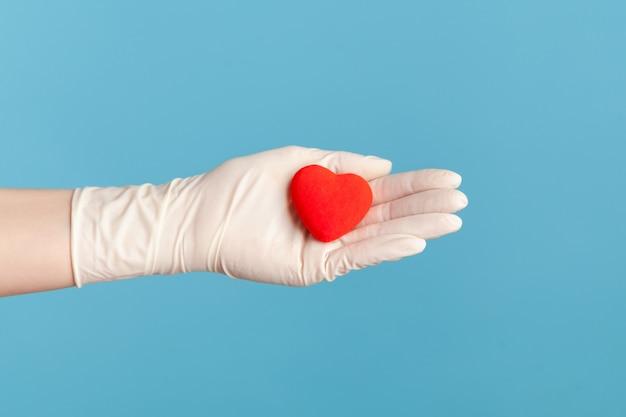 Zijaanzichtclose-up van menselijke hand in witte chirurgische handschoenen die kleine rode hartvorm in hand houden.